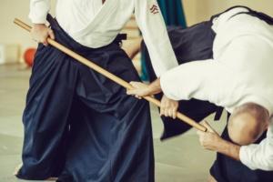 aikibuki-tomasz-sowinski-6dan-warszawa 20